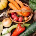 親子でやりたい 秩父で農業体験できる施設を4つご紹介!