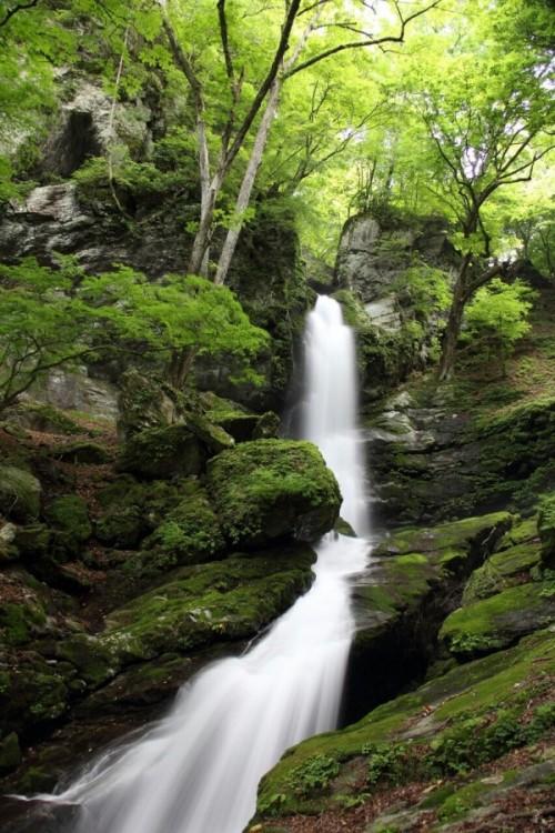 古からの祈りがある場所 不動滝