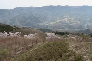三沢方面 美の山ハイキング
