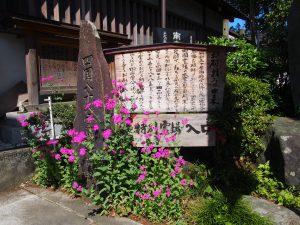 16番 西光寺