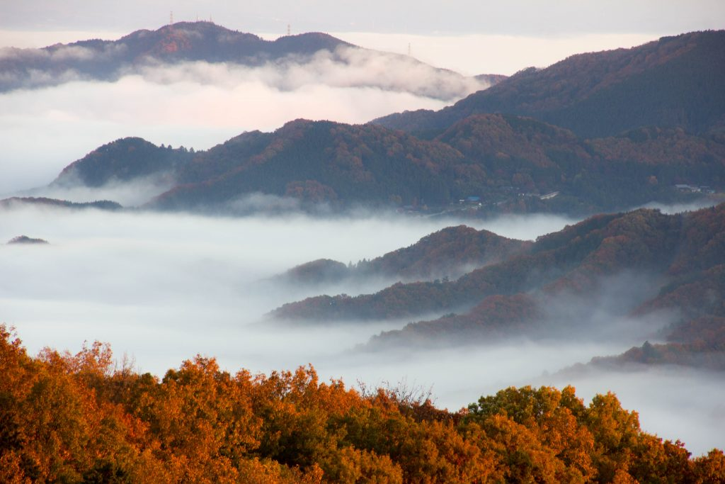 美の山から長瀞方面の雲海が波打っているように見える