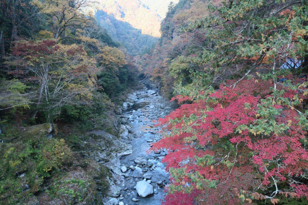 三峰神社へ向かう道のり 紅葉の様子