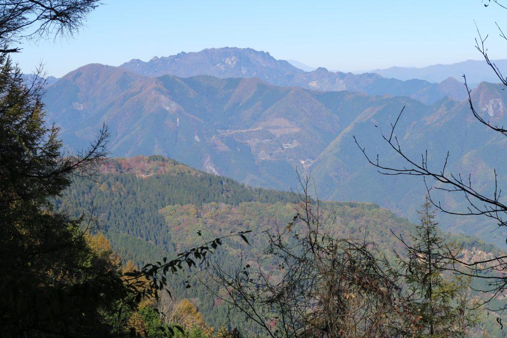 木々の合間から眺める山