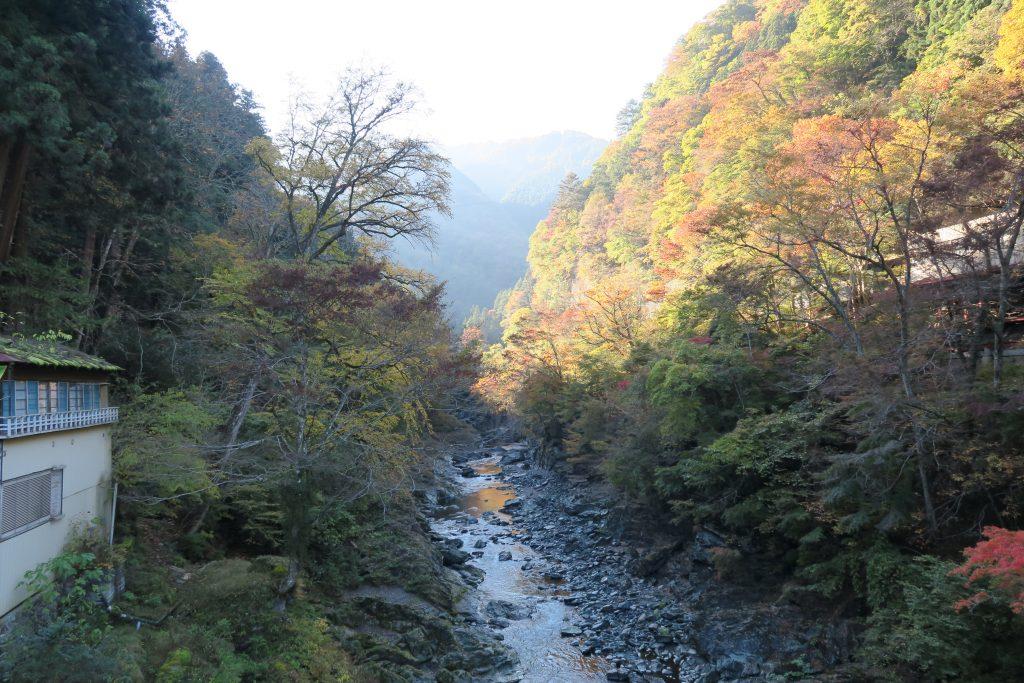 三峰神社からの帰り道 紅葉の様子
