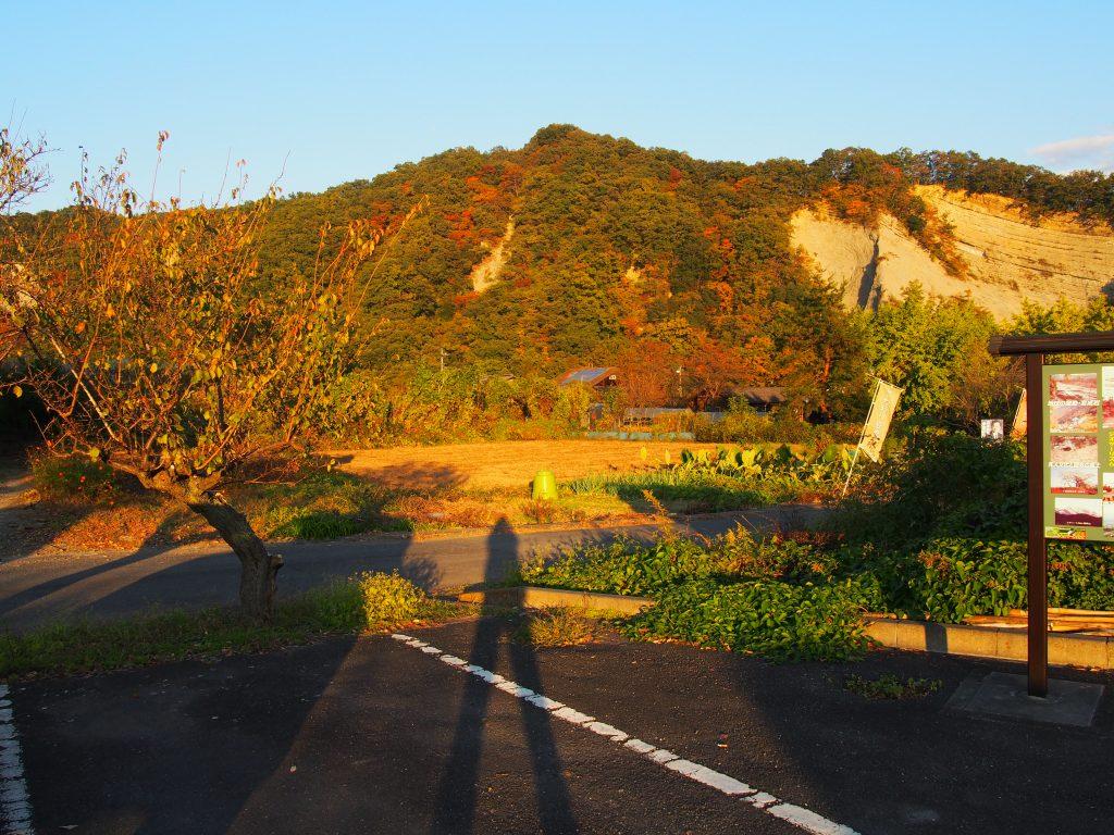 小鹿野 ようばけ 山の紅葉の様子
