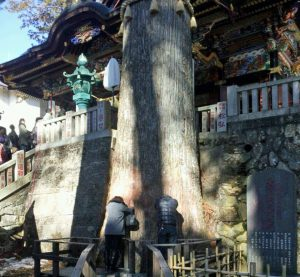 三峰神社からの眺め 冬