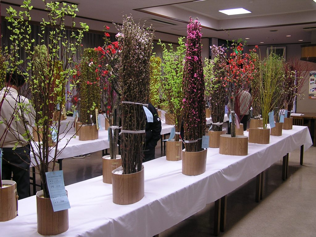 両神道の駅花の展覧会2017年