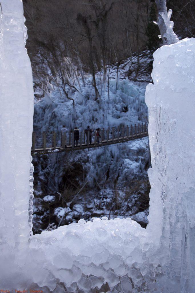 尾ノ内百景氷柱 秩父三大氷柱 氷の間から