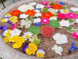 花んいかだ お花が浮かべられたつくばい