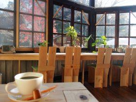 村カフェ 店内から外を見る
