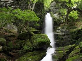 秩父大滝不動の滝 新緑