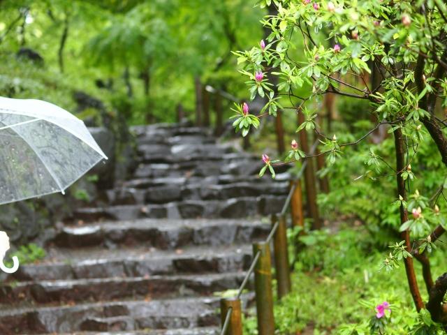 雨の日も秩父を楽しむスポット5選