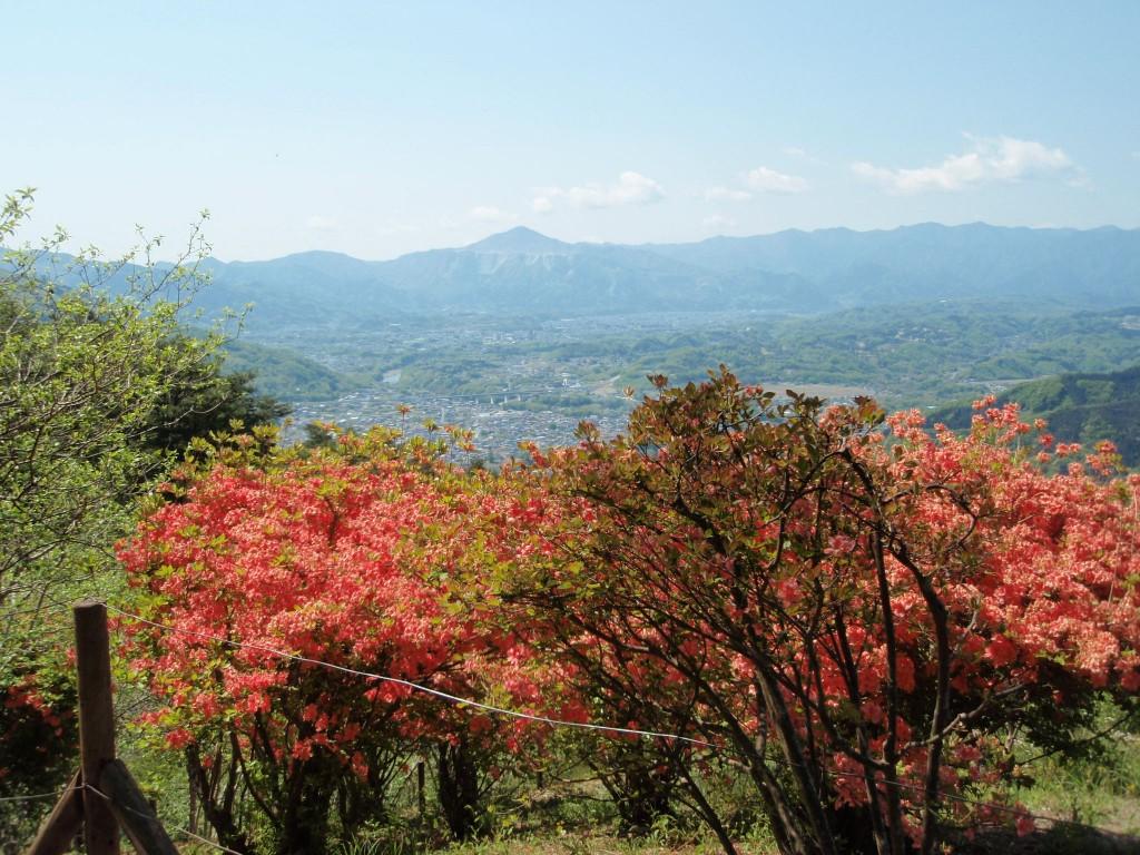 長瀞宝登山神社から見える皆野町と武甲山/秩父観光ちーぽん