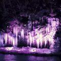 三十槌の氷柱みそつちのつらら2019 秩父市大滝