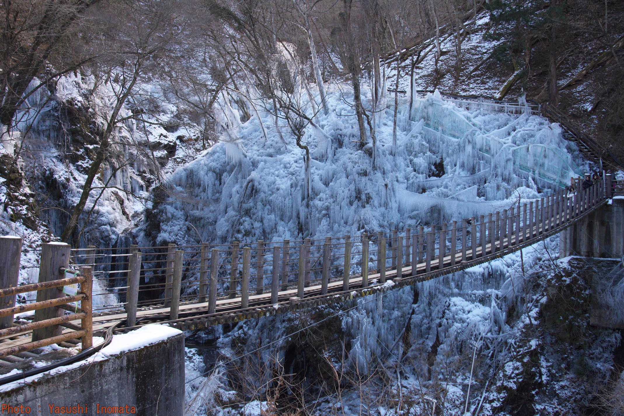 尾ノ内百景氷柱 秩父3大氷柱 つり橋
